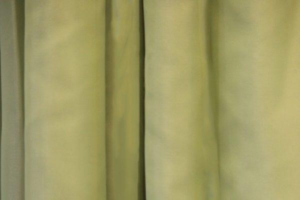 Pastel Green Sheer