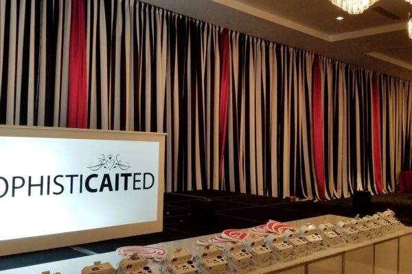 Quest-Events-Event-Drapery-Special-Childrens-Events-Parties-Social-Gatherings-Sweet-16-Sophisticated-Theme-Scenic-Design-Decor-Specialty-Drape-Chandeliers