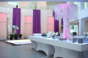 Quest-Events-Event-Drapery-Special-Event-Childrens-Party-Scenic-Design-Decor-Specialty-Drape-Bar-Furniture