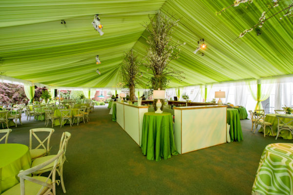 Ceiling-social-wedding-lime-green-sheer-tent